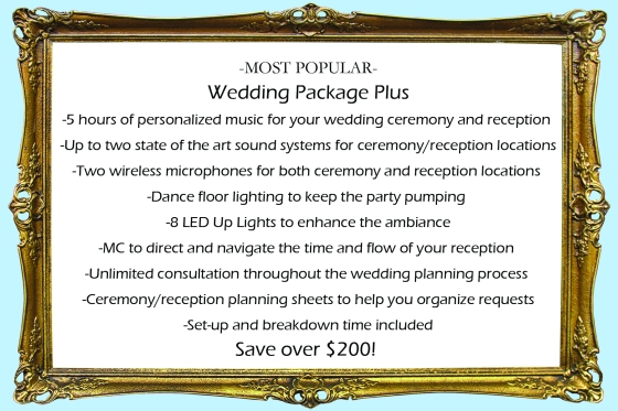 Sarasota Wedding DJ Tampa Bay Wedding DJ Event DJ